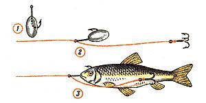 оснастки при ловле на мертвую рыбку