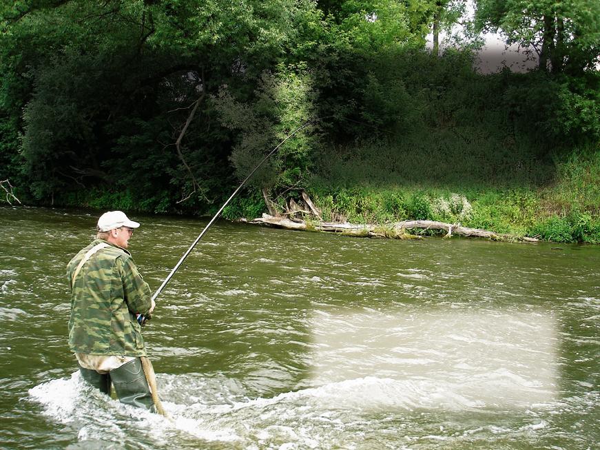 как клюет рыба в полнолуние летом