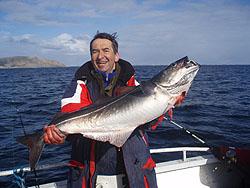 Рыбалка в финляндии и норвегии - Mivela